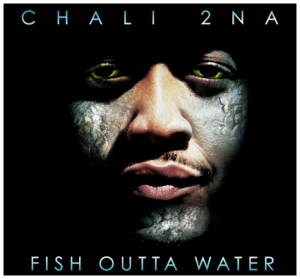 fish-outta-water