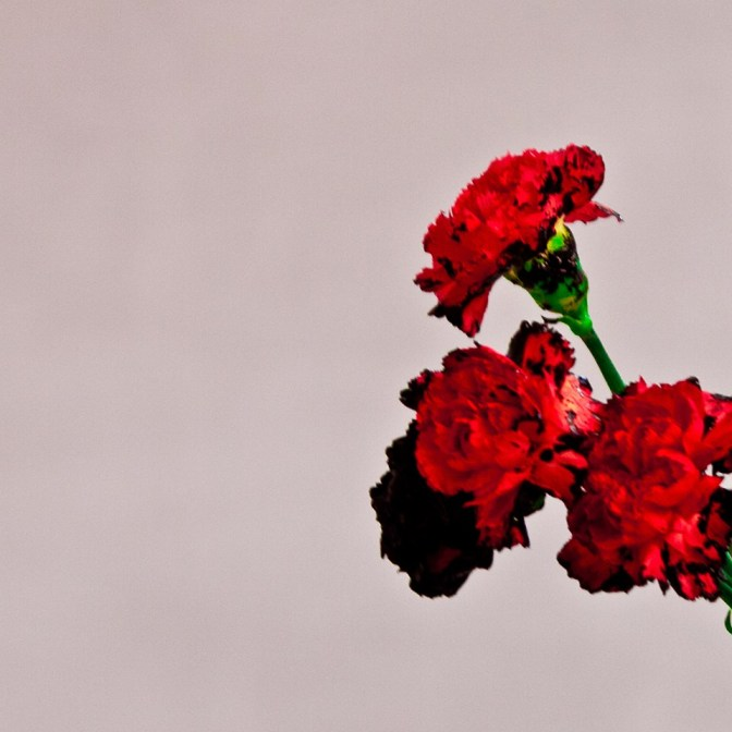 John Legend « Love in the Future » @@@@