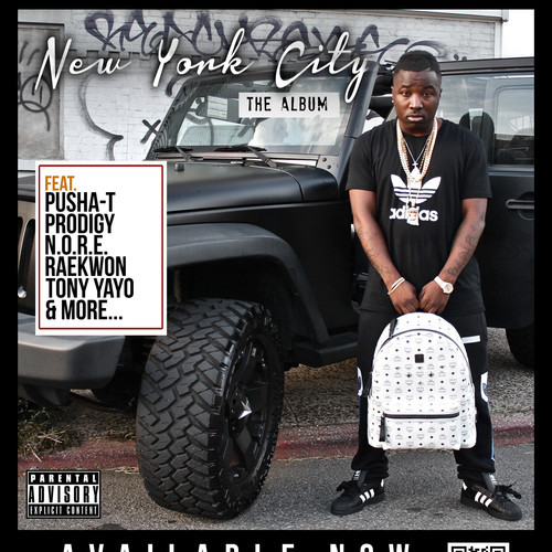 Troy Ave « New York City: The Album » @@@½
