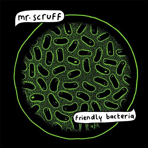 mr scruff-friendly bacteria